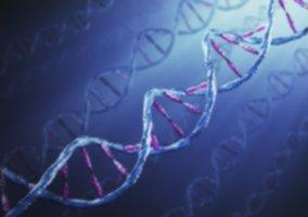 Exam de génie génétique